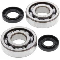 Crankshaft bearing and seal kit All Balls Racing